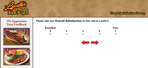 Lucille's Smokehouse Bar-B-Que Customer Feedback Survey