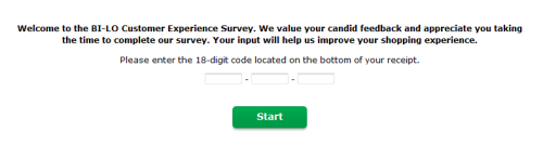 BI - LO Customer Satisfaction Survey