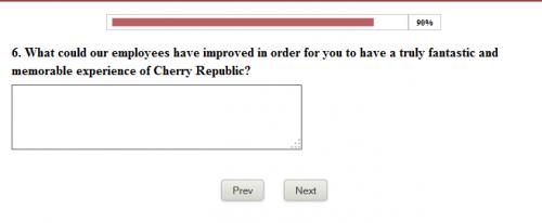 Cherry Republic Citizen Experience Survey